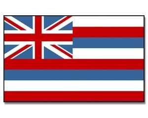 Flagge Hawaii 90 x 150