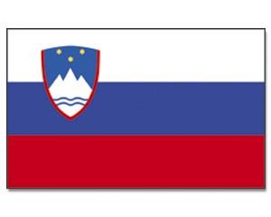 Flagge Slowenien 90 x 150