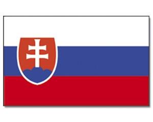 Stock-Flagge Slowakei 30 x 45