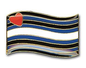 Pin Leather Pride Flag (geschwungen), 24 mm