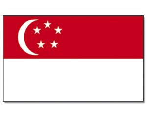 Flagge Singapur 90 x 150