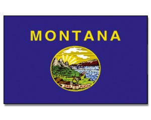 Flagge Montana 90 x 150