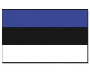 Stock-Flagge Estland 30 x 45