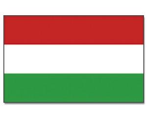 Stock-Flagge Ungarn 30 x 45