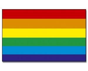 Stock-Flagge Regenbogen 30 x 45