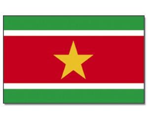 Flagge Surinam 90 x 150