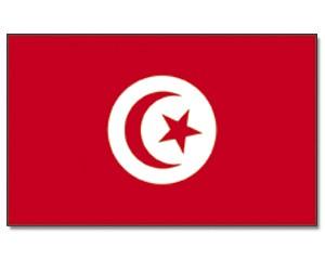 Stock-Flagge Tunesien 30 x 45