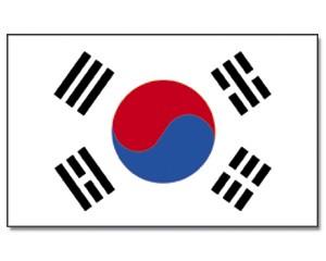 Stock-Flagge Südkorea 30 x 45