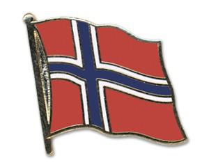 Flaggen-Pins Norwegen (geschwungen)