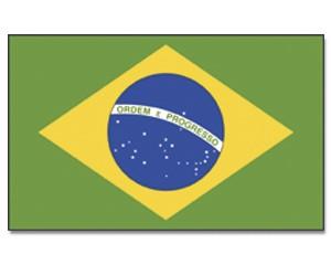 Stock-Flagge Brasilien 30 x 45